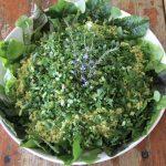 TriHealth salad